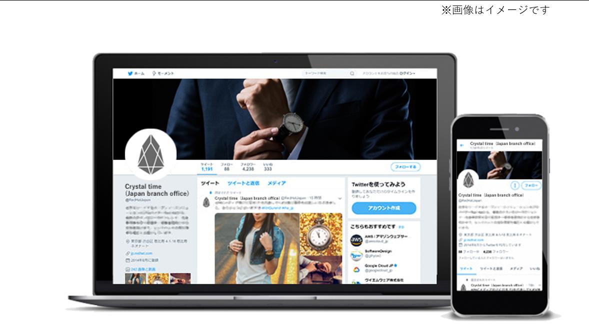 某外資系腕時計メーカー(日本支社) 様の実績イメージ